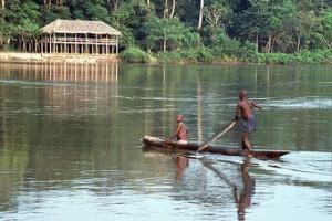 viajes-a-camerun-doli-lodge-en-dzanga-sangha