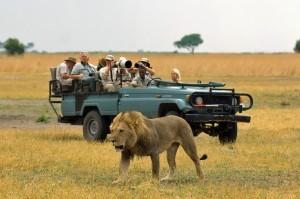 viajar-a-africa-es-seguro-y-hacer-safaris-en-Botswana-300x199