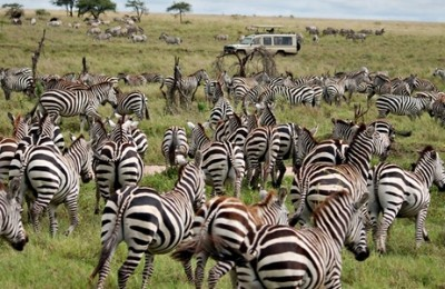 Viaje a Tanzania y Zanzíbar