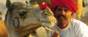 hindu-con-su-camello-en-india