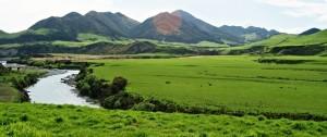 paisaje-de-kaikorua-en-nueva-zelanda