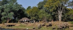 Alojamiento Ruckomechi Camp en Zimbabwe
