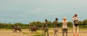 Actividad de safari a píe en Zambia