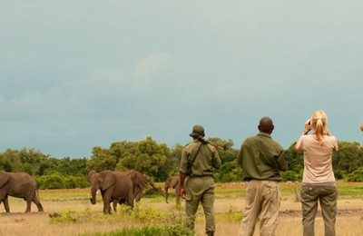 Zambia Esencial