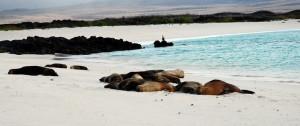 viajes-islas-galapagos2