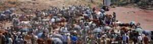 mercado--viajes-a-etiopia