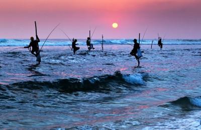 Maravillas de Sri Lanka