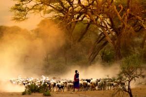 Paisajes de África