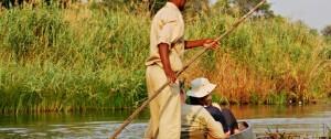 Safari en mokoro por los canales del Delta Del Okavango en Botswana.