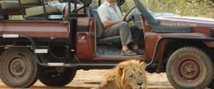 Safari en Zambia en vehículo 4x4