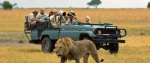 Safari en vehículo 4x4 del alojamiento Selinda Camp en Botswana