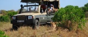 Vehículo 4x4 realizando safari.