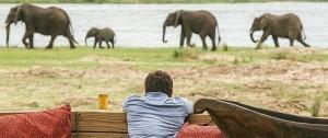 Preciosas vistas desde el alojamiento Ruckomechi Camp en Mana Pools National park Zimbabwe