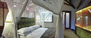 viajes-a-tanzania-hotel-arusha-coffe-lodge