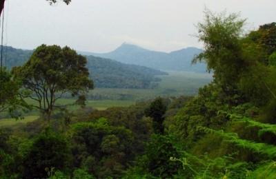 Lo mejor de Uganda