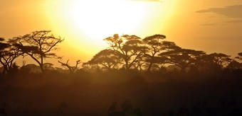 viajar-a-namibia