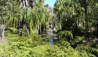 viajes-a-madagascar-parque-nacional-del-isalo-i