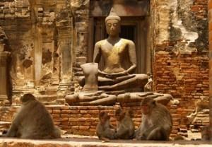 viajes-a-tailandia-2